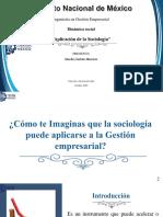 Aplicación de la Sociología en la Gestión