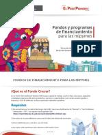 BROCHURE- INSTRUMENTOS FINANCIEROS - PRODUCE