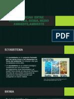 DIFERENCIAS  ENTRE ECOSISTEMA, BIOMA, MEDIO AMBIENTE,AMBIENTE-convertido.pdf
