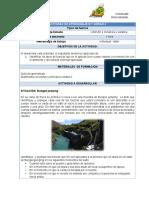 Práctica 6. Preinforme Fuerzas, equilibrio de fuerzas (1)