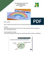 Guía de ciencias naturales , la célula