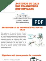 CAPITULO 5 FLUJO DE CAJA Y ESTADOS FINANCIEROS PRESUPUESTADOS.pdf