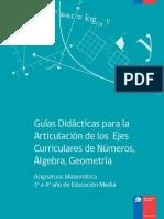 Guias Didacticas Articulacion y Modelizacion.pdf