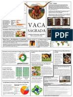 11x17+Sacred+Cow+Brochure+Spanish.pdf