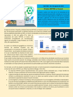 Cad El Sector MIPYME en Panam.pdf