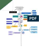 creacion de empresa - Cronograma vertical.pdf