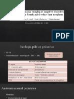 Lesiones Benignas Rm Pelvica