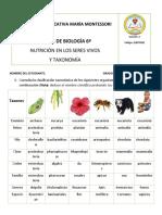 Taller tercer periodo Nutrición en los seres vivos y taxonomia