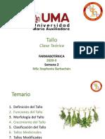 Farmacobotánica_S3_Tallos Medicinales(1)