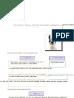 Reglas-Ortográficas-de-LL-y-Y-Para-Primer-Grado-de-Secundaria (1)