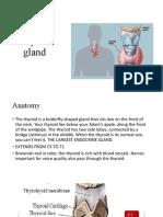 endocrine part 2