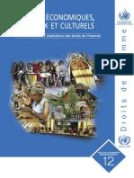Droits économiques, sociaux et culturels.pdf