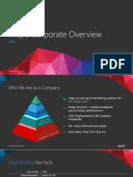 Alepo Company.pdf