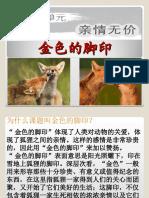 六年级华语第十三单元 - Copy