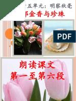 第十五单元_明察秋毫.pptx