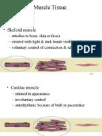 skeletal muscle ch 10