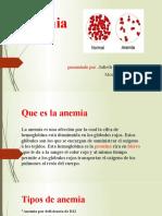 exposicion de la anemia