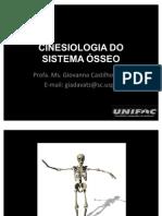 anato_cinesiolo