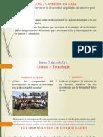 CIENCIA Y T. LUNES  5 -10-20.pptx