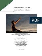 P. Fidel Oñoro - Discipulado de la Palabra - Semana 14 T=