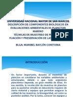 Clase semana X Semestre 2015-I Plancton marino MBaylon
