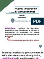 CLASE 1-Respiración celular y mitocondrias (1)