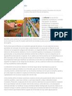 Alberto Benegas Lynch - El proceso inflacionario