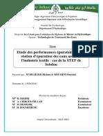 Ms.Hyd.Belhadji+Moumeni.PDF-déverrouillé.pdf