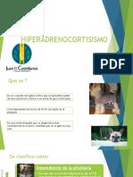 0_HIPERADRENOCORTISISMO.pptx