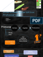 Diversidade eucariotica_ protozoarios