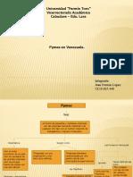 juanferminlopez-110531171214-phpapp01