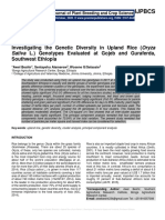 Investigating the Genetic Diversity in Upland Rice (Oryza Sativa L.) Genotypes Evaluated at Gojeb and Guraferda, Southwest Ethiopia