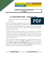 EL GARANTISMO PENAL. CARLOS TORALES