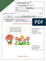 TALLER 9_Reino Plantae.docx
