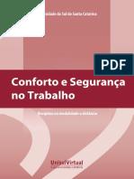 Conforto_e_seguranca_no_trabalho_livro.pdf