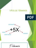 TIPOS DE TÉRMINOS