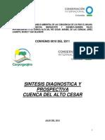 SINTESIS DIAGNOSTICA Y PROSPECTIVA ALTO CESAR