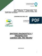 SINTESIS DIAGNOSTICA Y PROSPECTIVA NEGRO