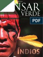 PensarVerde-Especial-Indios.pdf