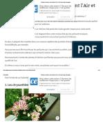 9 Plantes d'Intérieur Qui Nettoient l'Air et Qui Sont Quasi Increvables_.pdf
