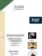 segundadeclinacin-140930155615-phpapp01-convertido.pptx