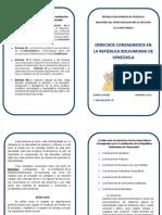 Diptico derechos consagrados en la Republica Bolivariana de Veneuela