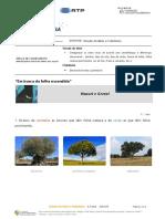 Estudo do Meio e Cidadania - aula 4 Plantas1