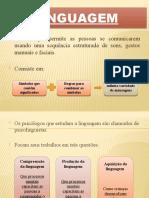Processos básicos - linguagem