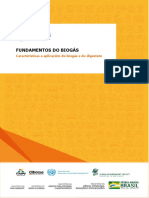 Aula 2 - Características e aplicações do biogás e digestato.pdf