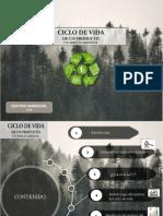 pp ciclo de V..pptx