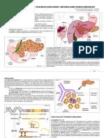 5. Anatomia y fisiologia del pancreas