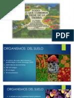 raúl.díaz-ponencia.powerpoint.pptx