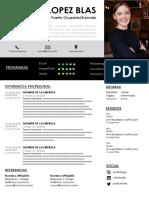 80-curriculum-vitae-ideal.pdf