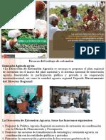 Errores del trabajo de extensión..pdf